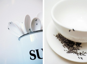 ants on spoons and saucer