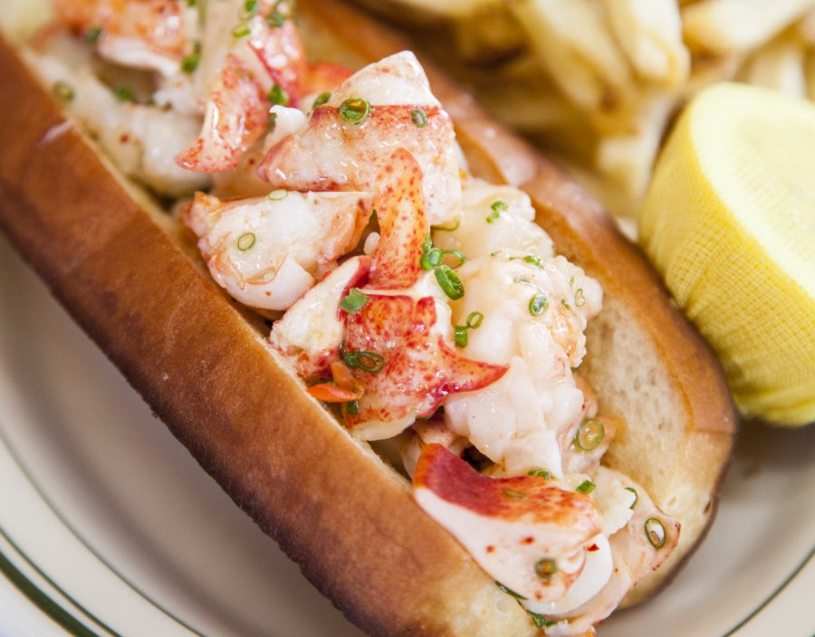connie & ted's lobster roll